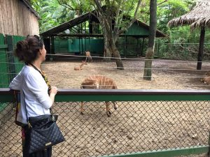Honeymoon bangkok thailand Bangkok Marriott Hotel Sukhumvit bangkok zoo 3
