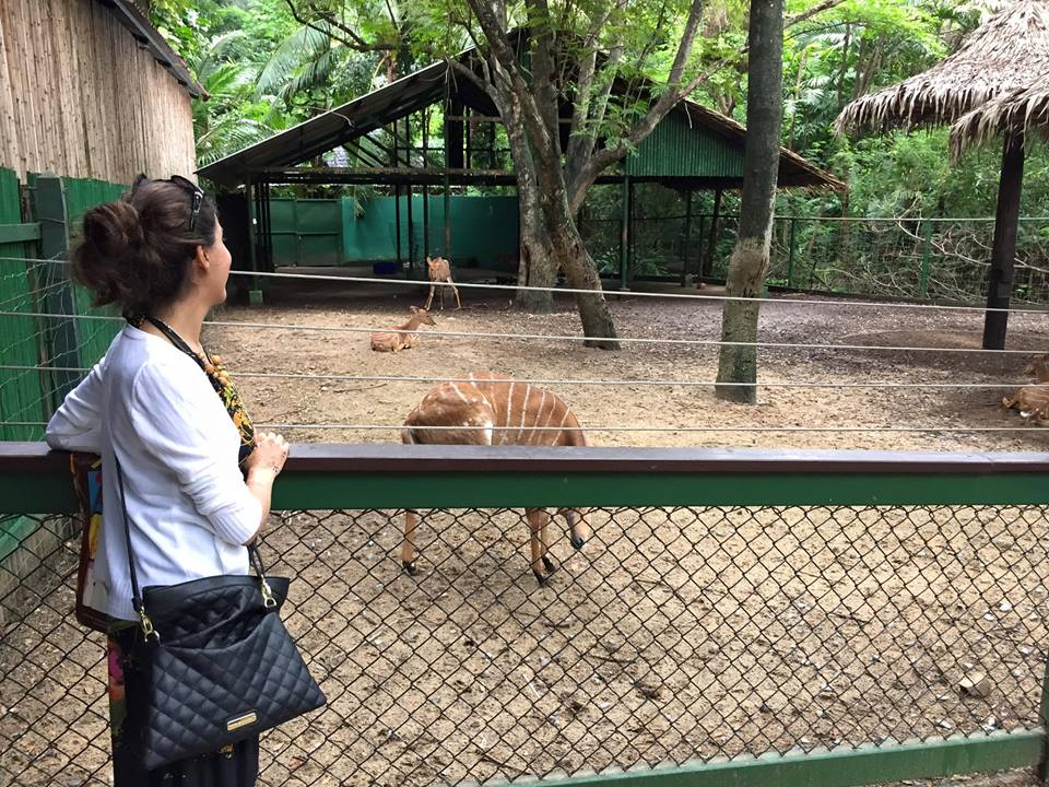 Honeymoon bangkok thailand Bangkok Marriott Hotel Sukhumvit bangkok zoo 3 Honeymoon Guide