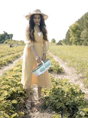 FASHIONFAIZA INAM Lulus Midi Dress Maxi Dress Chic Best Summer Fashion Seasonal 4